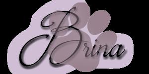 www.buecher-pfoten.de-Brina-Logo