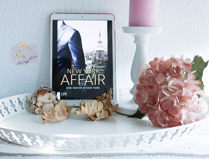 Gelesen: Louise Bay – New York Affair 01. Eine Woche in New York