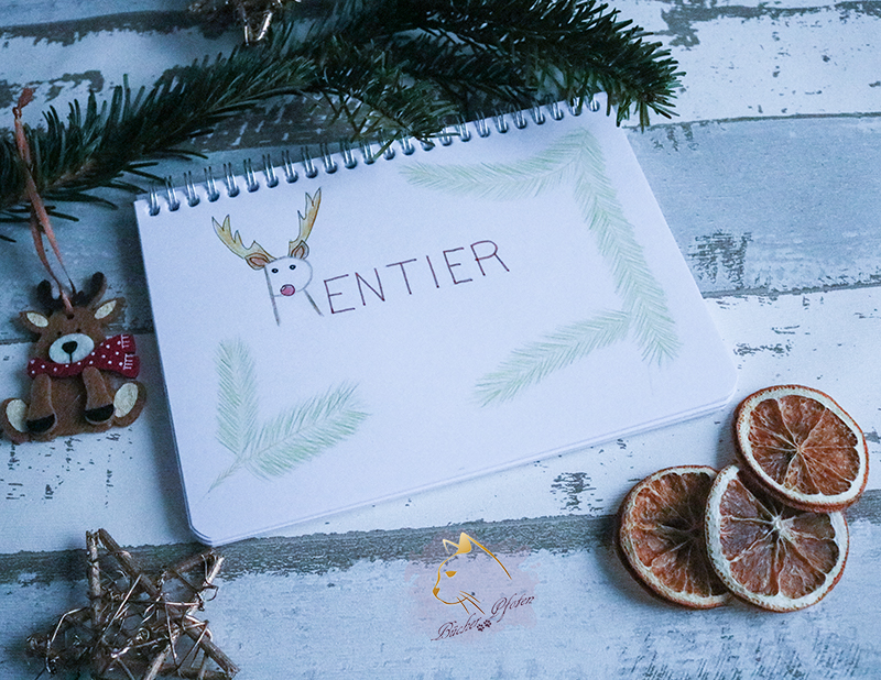 Handlettering #4 - weihnachtliche Buchfigur