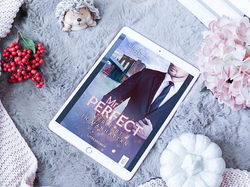 Mr. Perfect: Verliebt in Manhattan - Leander Rose